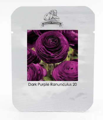 Zi Yuren' Dark Purple Ranunculus Asiaticus Perennial Flower Seeds