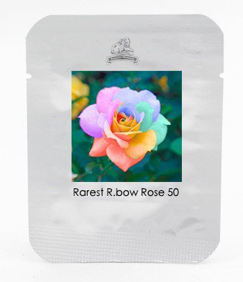 The Rarest Bright Rainbow Rose Flower Seeds, Professional Pack, 50 Seeds / Pack