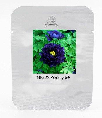 1 Professional Pack, 5 Seeds / Pack, Dark Blue Tree Peony Flower Seeds