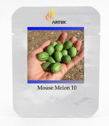 Heirloom Mouse Melon Sandiita Cucamelon Melothria Scabra Seeds