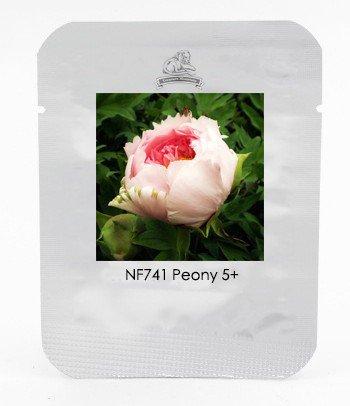 Heirloom Light Pink Rose Red Tree Peony 'Qiu Ball' Flower Seeds