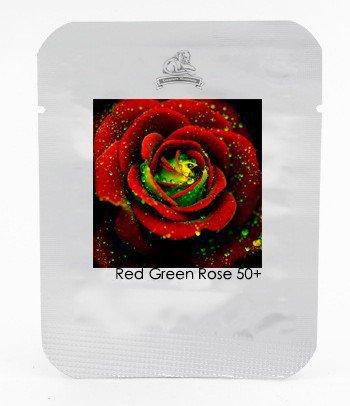 Heirloom Big Blooming Red Green Rose Bush Flower Seeds, Professional Pack