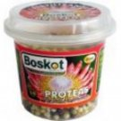 FERTILIZER   BOSKOT PROTEAS 100g