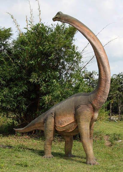 Custom Made Life Size Brachiosaurus Looking Backward Adolescent Dinosaur Statue