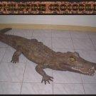 Custom Made Life Size Crocodile 9' Pre-Dinosaur Era Statue