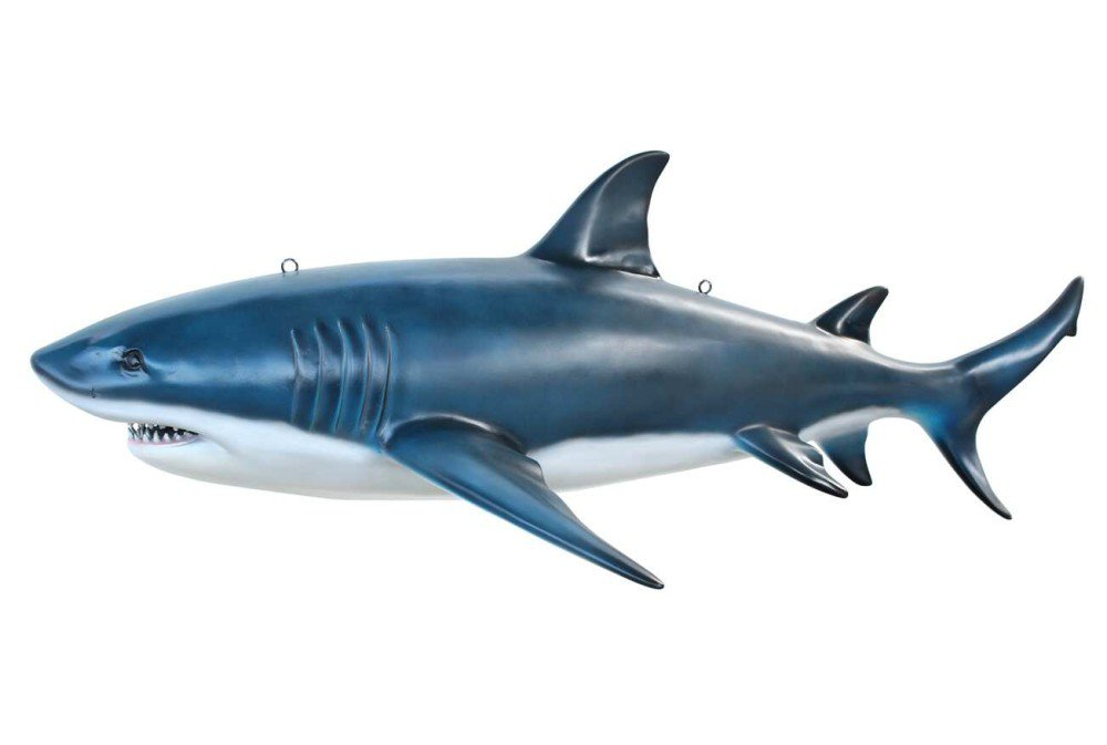Life Size 15' Megalodon or Great White Shark Jaws Statue