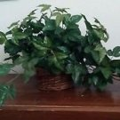 "English Ivy Silk Green Leaves Centerpiece Basket Home Decor 13"" H x 38"" W"