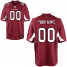 Men's Arizona Cardinals Nike Cardinal Custom Game Jersey