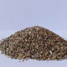 100 % Pure Herbal Kasni Seed   Chicory Seed   Cichorium intybus-Free Ship