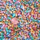 300 Pastel Dyed TINY Mini Venetian Cone Seashells Shells Beach Crafts Pink Blue