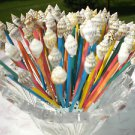 50 Colored Mix Toothpicks Seashell Pick Dinner Wedding Shower Skewer Party Gift