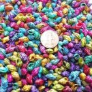 200 Mini Tiny Dyed Persica Seashell Party Sea Shell Wedding Confetti Beach Craft