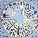 50 WEDDING Seashell Party Toothpicks Cocktail Picks Shell Beach Multi Christmas