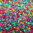 200 MINI TINY Dyed Seashells Craft Scrapbook Shell Beach Littorina Jewelry Mix L