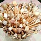 Seashell Mix Toothpicks Wedding Dinner Party Picks Shells Appetizer Cocktai
