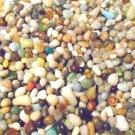 6oz Glass Earth Mini Pebbles Crafts Aquarium Stones Jewels Gem Fairy Garden Mix