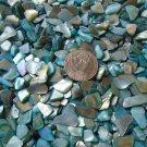 3oz Teal Green Blue Crushed Seashells Crafts Vase Filler Aquarium Shells Fairy