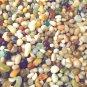 5oz Glass Earth Mini Pebbles Crafts Aquarium Stones Jewels Gem Fairy Garden Mix