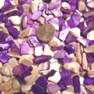 4oz Ivory Purple Crushed Seashells Vase Filler Sea Shells Craft Jewelry Scatters