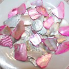 5oz  Pink Ivory Crushed Seashells Crafts Mosaics Vase Filler Sea Shells Beach