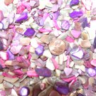 6oz Purple Pink Crushed Seashells Mosaics Vase Filler Sea Shells Craft Jewelry