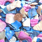 Blue Pink Crushed Seashells Crafts Aquarium Mosaics Vase Filler Sea Shells Beach