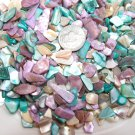 5oz Teal Blue Lavender Crushed Polished Crafts Seashells Sea Shells Vase Filler
