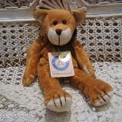 """BOYDS FOODLE MCDOODLE 9"""" BABY BOYDS BEAR RETIRED  ***NEW STORE STOCK**"""