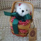 """BOYDS JOLLY B. HOLLY 8"""" CHRISTMAS BEAR IN BASKET *NEW STORE STOCK*"""