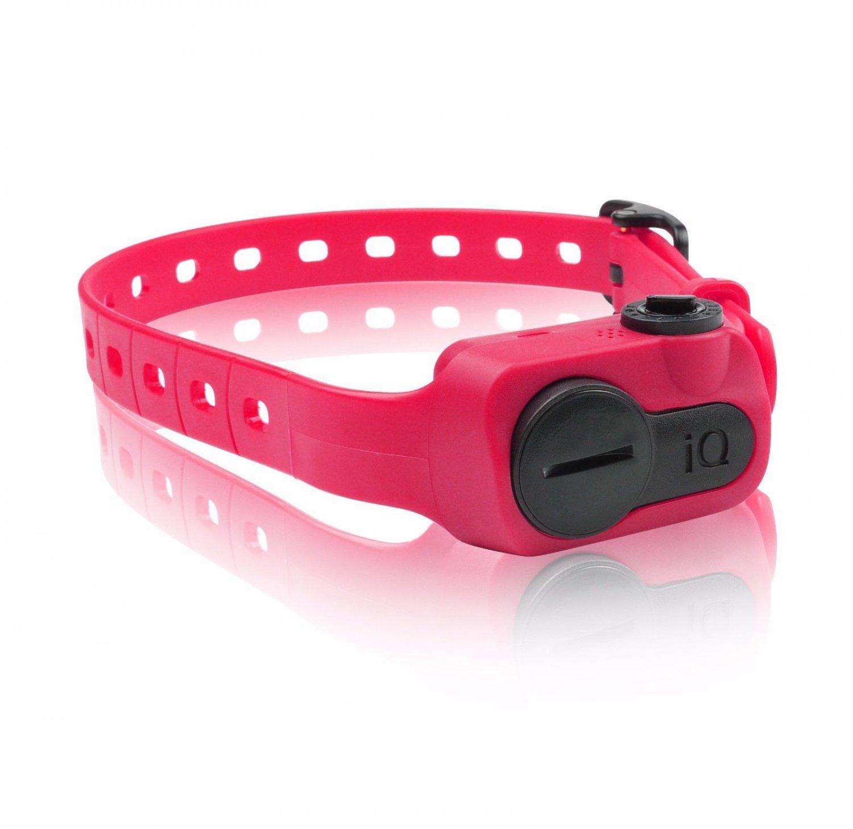 Dogtra iQ No Bark Collar Pink Vibration Waterproof Adjustable Limited Warrenty