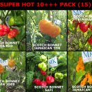 SUPER HOT 10 +++, 6 hottest chili peppers in the world, 60 seeds, pack (15)