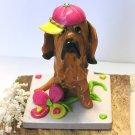 A Bloodhound's Favorite Hat