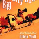 Big City Cool : Short Stories About Urban Youth - Paperback Book USED