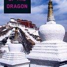 Prayer of the Dragon (SoHo Crime) by Eliot Pattison - Paperback Mystery