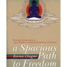 A Spacious Path to Freedom by Gyatrul Rinpoche - Paperback Buddhism