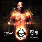 """2Pac Tupac Shakur 13""""x19"""" (32cm/49cm) Poster"""