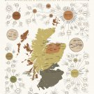 "The Survey of Scotch of Scotland Chart   18""x28"" (45cm/70cm) Canvas Prin"
