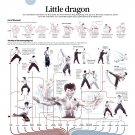 "Bruce Lee Infographic Chart  18""x28"" (45cm/70cm) Canvas Print"