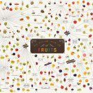 "The Various Varieties of Fruits Chart  18""x28"" (45cm/70cm) Canvas Print"