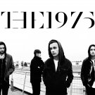 "The 1975  Matthew Healy  18""x28"" (45cm/70cm) Poster"