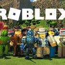 "Roblox Game  18""x28"" (45cm/70cm) Poster"