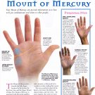 """Analysing the Mount of Mercury Palmistry Chart 18""""x28"""" (45cm/70cm) Poster"""