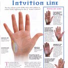 """Reading your Intuition Line Palmistry Chart  18""""x28"""" (45cm/70cm) Poster"""