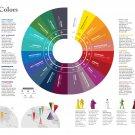 """Local Colors Chart  18""""x28"""" (45cm/70cm) Canvas Print"""