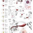 "A Question of Taste Wine Chart  18""x28"" (45cm/70cm) Canvas Print"
