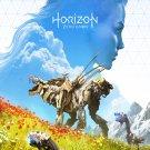 "Horizon Zero Dawn The Frozen Wilds 18""x28"" (45cm/70cm) Poster"