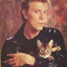 """David Bowie  13""""x19"""" (32cm/49cm) Canvas Print"""