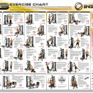 """Different Types of Exercise Workout Chart  18""""x28"""" (45cm/70cm) Canvas Print"""