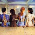 "Pink Floyd  13""x19"" (32cm/49cm) Canvas Print"