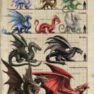 "Adult Dragon Size Comparison Chart  18""x28"" (45cm/70cm) Poster"